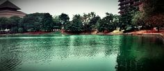 One of beautiful lakes at University of Indonesia #danaukenanga #UI #Depok