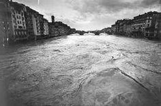 Firenze 66