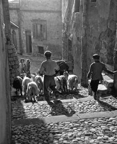 LIfe in Agrigento, Sicily - Italy in 1951 Italian People, Vintage Italy, Famous Photographers, Vintage Photographs, Historical Photos, Black And White Photography, Old Photos, Street Photography, History
