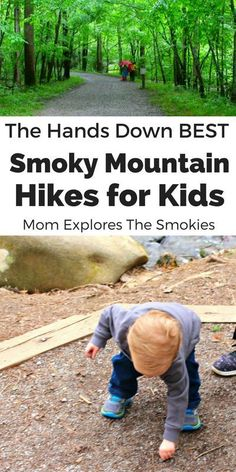These 15 Smoky Mountain trails make taking kids hiking fun and worry free. Smoky Mountain Trails, Smoky Mountains Hiking, Smoky Mountain National Park, Mountain Hiking, Great Smoky Mountains, Smokey Mountain, Smoky Mountains Tennessee, Appalachian Mountains, National Forest