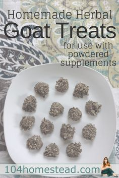 The herbal powders I give my goats sift through the feed and end up uneaten at the bottom of the dishes. That's why I started making these homemade herbal goat treats. Keeping Goats, Raising Goats, Keeping Chickens, Goat Playground, Goat Pen, Goat Care, Nigerian Dwarf Goats, Goat Farming, Baby Goats