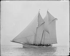 "William Fletcher Weld, Jr's cruising schooner ""Gitana"" (designed and built by the Dennison J. Lawlor shipyard, Chelsea, MA in 1882)"