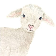 Nursery prints lamb nursery lamb painting farm nursery decor farm animal prints nursery prints boy baby shower decor farm nursery boy - Top Of The World Lamb Nursery, Animal Nursery, Nursery Boy, Nursery Decor, Animal Sketches, Animal Drawings, Lamm Tattoo, Crown Painting, Painting Prints