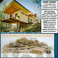 """""""Hemp-crete House"""" in Asheville, North Carolina featured in documentary, Bringing It Home, about the battle for industrial hemp, the history of hemp, and how it could drastically cut the energy and money spent heating and cooling homes."""