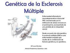 Identifican 200 causas genéticas de la EM, pero todavía no dan con el por qué se radica en el cerebro y la médula