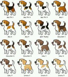beagle                                                                                                                                                      Más
