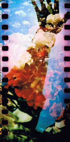 Flowery double with the Sprocket Rocket