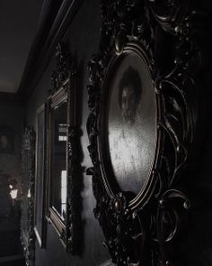 dark and gothic image Gothic Aesthetic, Slytherin Aesthetic, Witch Aesthetic, Dracula, Yennefer Of Vengerberg, Mia Wasikowska, Crimson Peak, Arte Obscura, Southern Gothic
