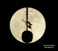 La salida de la luna llena el día de Navidad y Nochebuena 2015 en La Guardia (Toledo)