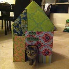Cat house I made for my 2 cats! Cost me nothing, just used things around the house and took less than an hour!