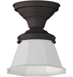 Rejuvenation offers an array of flush mount lighting & semi-flush mount lighting. Find flush mount lighting in a variety of styles, finishes & shade options. Lighting Sale, Art Deco Lighting, Victorian Lighting, Mirrored Wallpaper, Floor Fans, Porch Accessories, Rose City, Unique Wall Decor