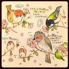 らくがきスケッチ:桜の蜜の食べ方に鳥の性格が表れます。上品な子は枝についたまま、豪快な子はむしりながら食べます。