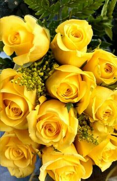 Some of the meanings of yellow roses are: friendship, joy, gladness, delight and happiness.