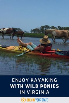 Enjoy an incredible boating adventure! Go kayaking with wild ponies around Chincoteague Island, Virginia. The horses will be just a short distance away, making this a perfect trip for wildlife lovers. It's also a great summer vacation stop for families. Backpacking Trips, Road Trips, Summer Travel, Us Travel, Best Bucket List, Chincoteague Island, Lake Mead, Hidden Beach, Relaxing Day