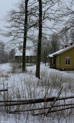 Winter, Norway