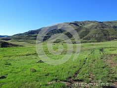 Photo about Green pastures and farm road at Avoca valley of Southern Drakensberg, South Africa. Image of space, cape, land - 107082818 South Africa, Cape, Southern, Victoria, Stock Photos, Green, Mantle, Cabo, Cloak
