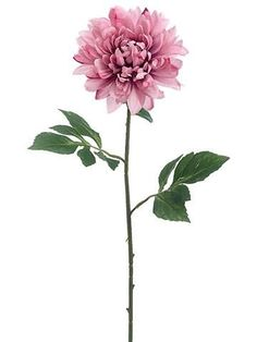 "Dahlia Silk Flower in Mauve Pink<br>6.5"" Bloom x 27"" Tall"