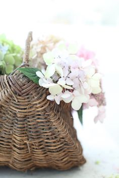 basket of hydrangea - beautiful Fresh Flowers, Beautiful Flowers, Bountiful Baskets, French Baskets, French Cafe, Pink Peonies, Basket Weaving, Wicker Baskets, French Antiques