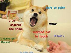 676e71881385feca3ac921089cf0fdd4 doge meme spirit animal doge coffee shiba inu coffee animals pinterest doge, meme,So Much Wow Meme