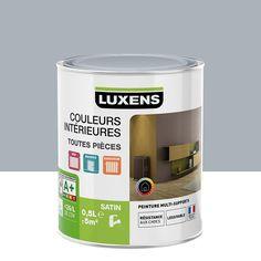 Peinture multisupports Couleurs intérieures satin LUXENS, gris zingué n°5, 0.5 L