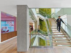 Офис юридической фирмы: стена, покрытая вьющимися растениями