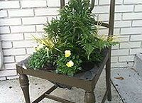 planter made out of an old chair, gardening, repurposing upcycling