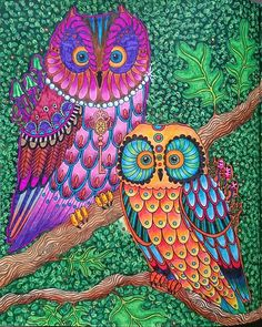 --> If you're looking for the top coloring books and writing utensils including watercolors, colored pencils, gel pens and drawing markers, please visit http://ColoringToolkit.com. Color... Relax... Chill.