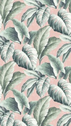 Tropicana Floral Leaf Wallpaper Pink - A Beautiful, Bold pattern, perfect to bring any room to life. For similar designs visit ilovewallpa - Tropical Wallpaper, Pastel Wallpaper, Trendy Wallpaper, Tumblr Wallpaper, Flower Wallpaper, Cute Wallpapers, Pink Wallpaper For Walls, Rose Gold Wallpaper, Leaves Wallpaper
