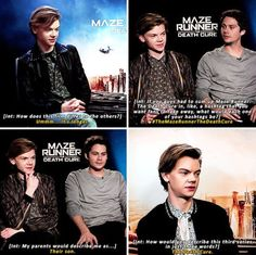 I love his blank humor. and while he still looks serious, everyone else is cracking up ❤️ Maze Runner Funny, Maze Runner Trilogy, Maze Runner Cast, Maze Runner Thomas, Maze Runner Movie, Maze Runner Series, Thomas Brodie Sangster, The Scorch Trials, Dylan O'brien