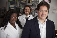 Proteins seek, attack, destroy tumor cells in bloodstream - http://scienceblog.com/480083/proteins-seek-attack-destroy-tumor-cells-bloodstream/