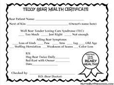 Teddy Bear Health Certificate