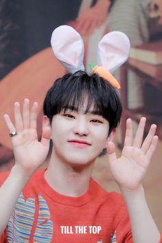 """till the top Woozi, Jeonghan, Wonwoo, Seventeen Leader, Hoshi Seventeen, Cute Hamsters, Fandom, Pledis 17, Team Leader"