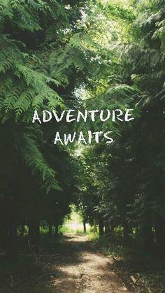 Adventure Awaits Forest iPhone 6 Wallpaper