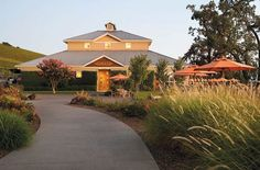 Kunde Winery. Fantastic setting in the Sonoma Valley hills off Highway 12.