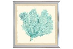 Pastel Sea Fan Print III on OneKingsLane.com