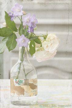 roses in a bottle | par odile lm
