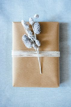 { silver and brown } simple but beautiful gift packaging Wrapping Ideas, Creative Gift Wrapping, Present Wrapping, Creative Gifts, Paper Wrapping, All Things Christmas, Christmas Crafts, Weekend Projects, Gift Packaging
