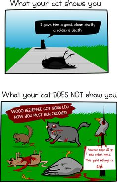 How much do cats actually kill? [Infographic] - The Oatmeal - Hilarious and disturbing all at the same time