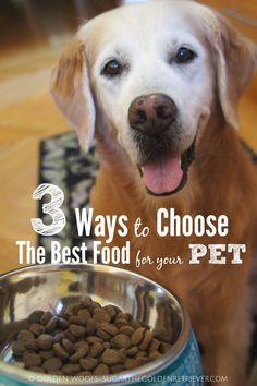 3 Ways to Choose The Best Pet Food for your PET