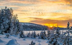 Download wallpapers winter, sunset, mountain landscape, snow, forest, Sweden
