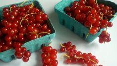 Two pints of the prettiest red currants