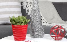A jade plant in a red pot on a white side table. Low Maintenance Indoor Plants, Wholesale Plants, Lucky Plant, Clean Pots, Inside Plants, White Side Tables, Jade Plants, Climbing Vines, Household Cleaning Tips
