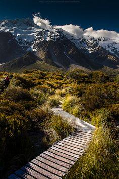 Hooker trail New Zealand