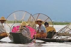 Gail Palethorpe - Fishermen of Inlet Lake Myanmar 2