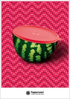 Tupperware lid watermelon cover - What a clever idea!
