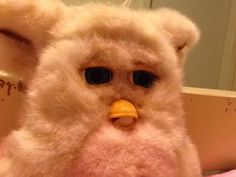My grandma had a 1998 furby. I wanted to take care of the furby. I had no idea how to operate it. I took the batteries out. A few years later, I decided to take it home (no batteries). To this day, I love my furbies.