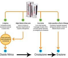 L-Arginina, Ossido Nitrico e Erezione Maschile - http://www.prosolutiongel.it/l-arginina-ossido-nitrico-erezione-maschile.html