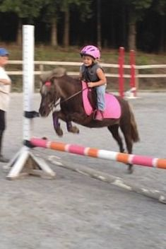 from Colleen Rutledge Eventing. This little girl is my idol.