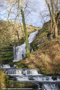 Scaleber Force: A waterfall near Settle, Yorkshire Dales, North Yorkshire, England. Beautiful area of Yorkshire.