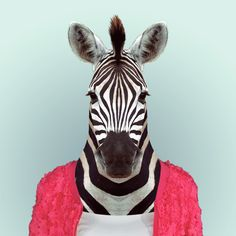 ZEBRA by Yago Partal  for ZOO PORTRAITS